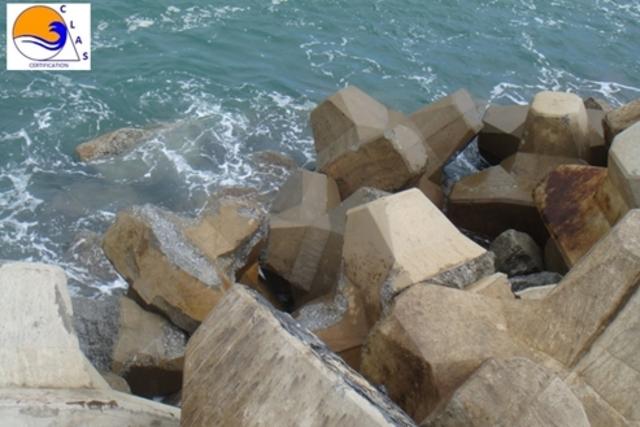 ACCROPODE cassés et extraits après mouvements sous l'eau - ACCROPODE collapsed